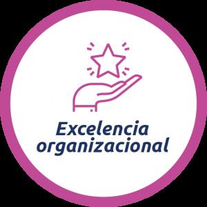 Expertos en gestión de calidad, garantizan la actualización de los procesos y su permanente aplicación en términos de excelencia operacional.